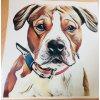 Samolepka psa podle vlastní fotky