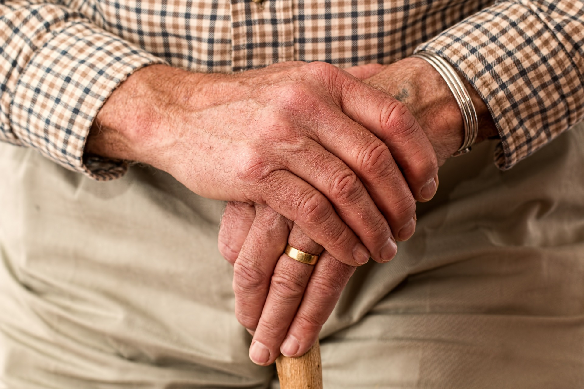 Semena konopí pro seniory