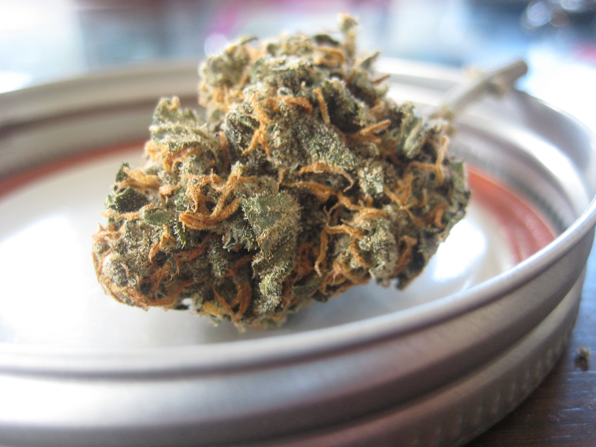 jak-spravne-skladovat-marihuanu