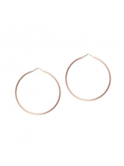 Collectable Earrings Rose Gold Plated 700x