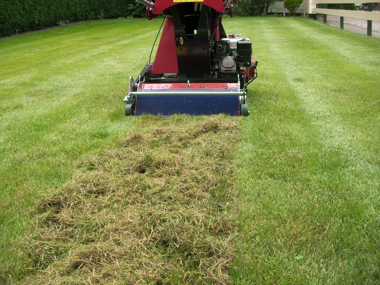 Co je vertikutace a jak prospívá vaší trávě