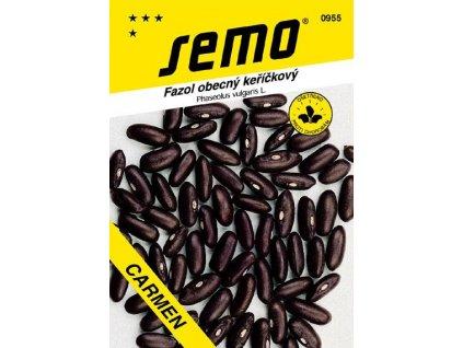Fazol keř na suchá semena Carmen 30 g