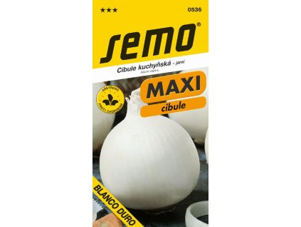 Cibule jarní - Blanco duro bílá 1 g - série MAXI
