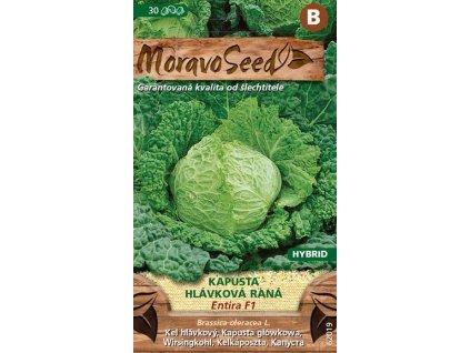 KAPUSTA HLÁVKOVÁ - ENTIRA F1 / Brassica oleracea L.
