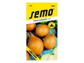Cibule jarní -Všetana žlutá 2 g