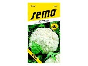 Květák jarní - BORA raný 0,5 g