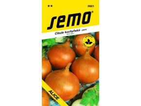 Cibule jarní - Alice žlutá 2 g