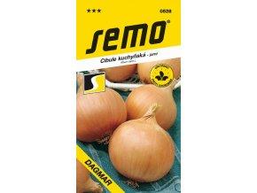 Cibule jarní - Dagmar žlutá 2,5 g