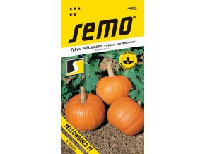 Tykev plazivá - Yellowgirls F1 (Halloween) 3 g