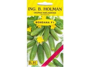OKURKA NAKLÁDAČKA HOLMAN - BOHDANA F1 jemnoostná / Cucumis sativus L.