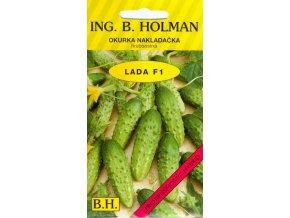 OKURKA NAKLÁDAČKA HOLMAN - LADA F1 hruboostná / Cucumis sativus L.