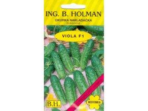 OKURKA NAKLÁDAČKA HOLMAN - VIOLA F1 hruboostná / Cucumis sativus L.