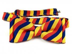 53401964 motylek trikolora rumunsko cervena zluta modra