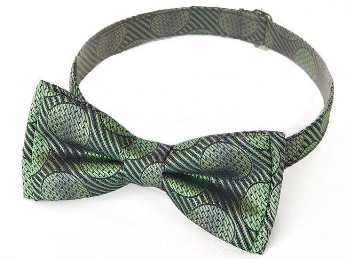 53400319 hedvabi zelena kolecko motyl