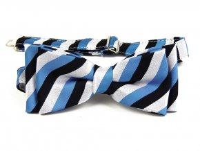 53401970 motylek trikolora estonsko bila cerna modra