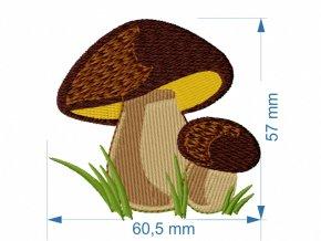 V 120 houby