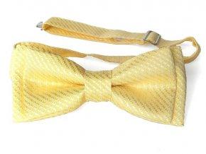 53400680 motylek polyester diagonala zluta 1