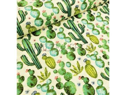 latka metraz kaktusy s160cm (1)