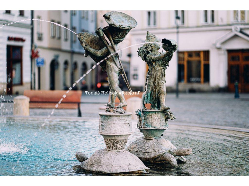 Fotografie - print č.15 Olomouc