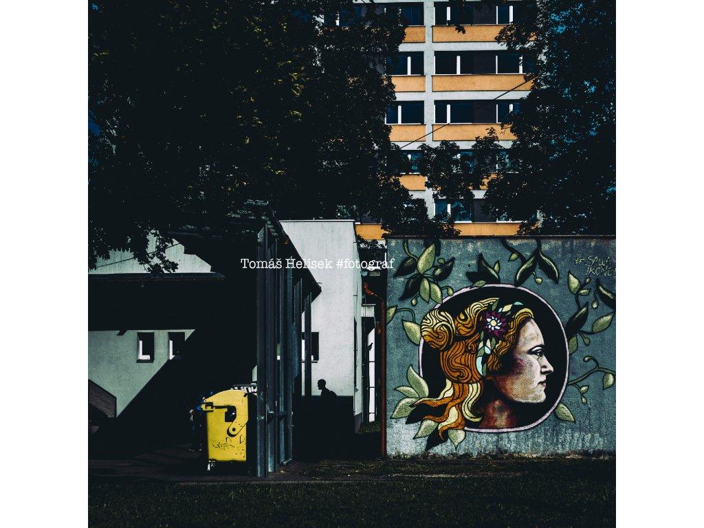 Fotografie - print č.47 Olomouc