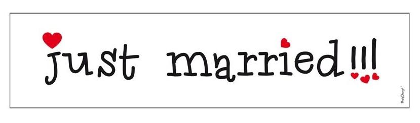 Svatební SPZ