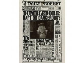 Harry Potter 3D képeslap - Dumbledore: Daft or dangerous