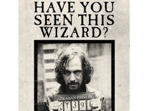 Harry Potter 3D képeslap - Have You Seen This Wizard?