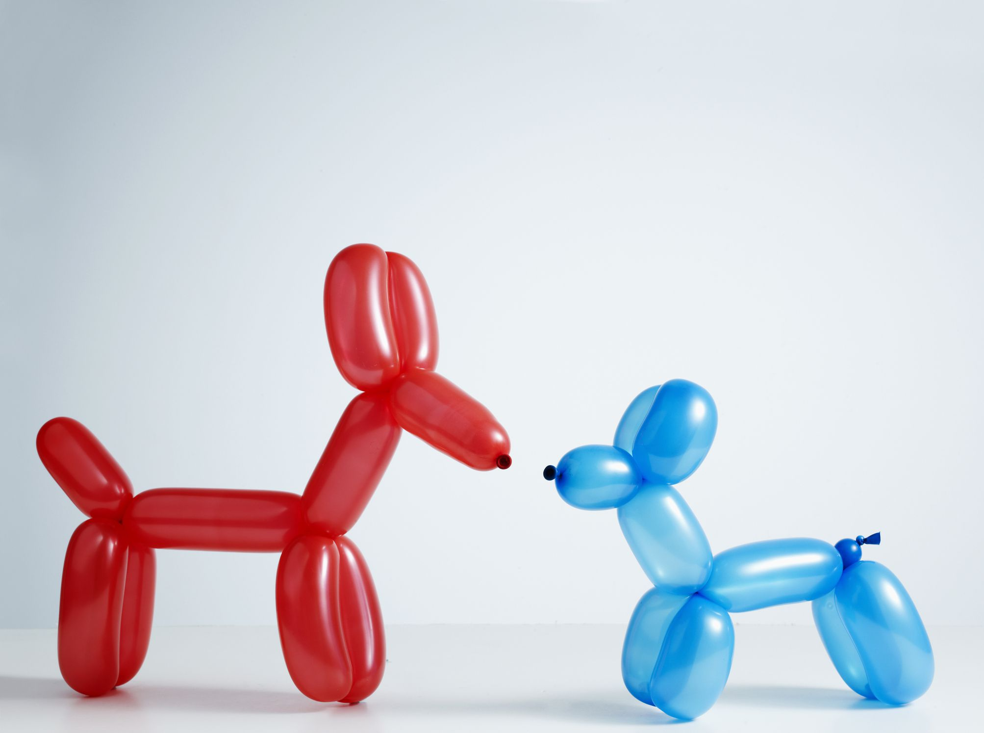 Balloon-dogs-GettyImages-90339990-58d01f225f9b581d72ca4ec3
