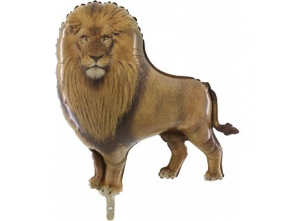 254 lion hd 750x750