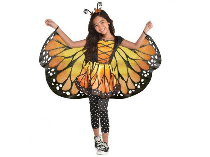 https://www.heliumking.ro/api/v1/image?query=product/17/99/66/190910082423-detsky-kostym-motylik.jpg