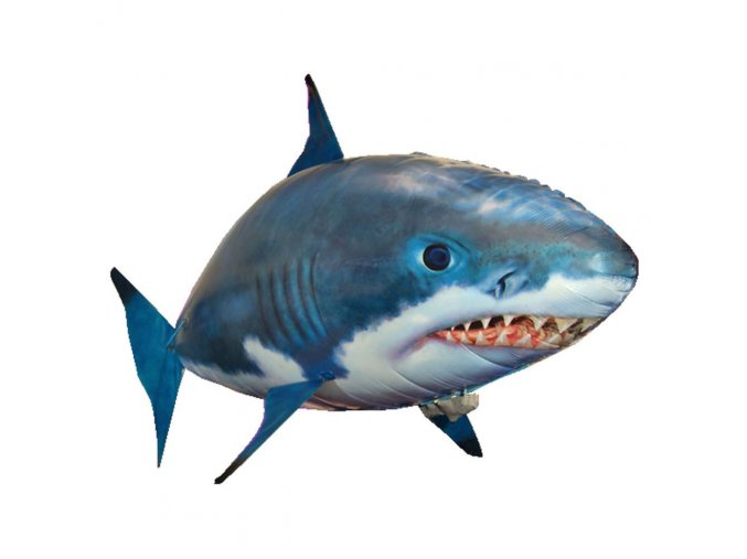 plavajuca ryba zralok