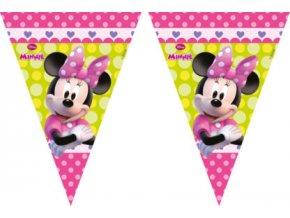 Banner Minnie