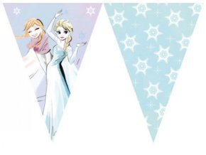 FROZEN SPARKLE FLAG BANNER