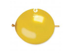 GLM13 39 O