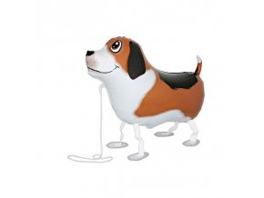 PW03 Bobby the Dog