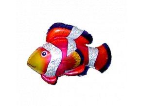 balon ryba klaun r 750x750