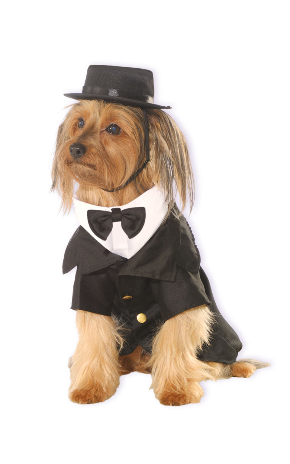 Rubies Kostým pre psov - Ženích Kostým pre psov: S