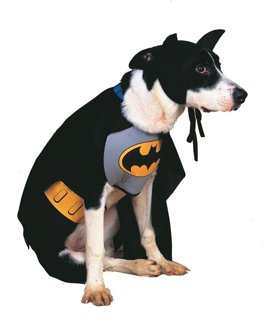 Rubies Kostým pre psov - Batman Kostým pre psov: S