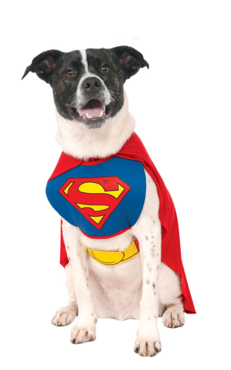Rubies Kostým pre psov - Superman Kostýmy pre psov: M