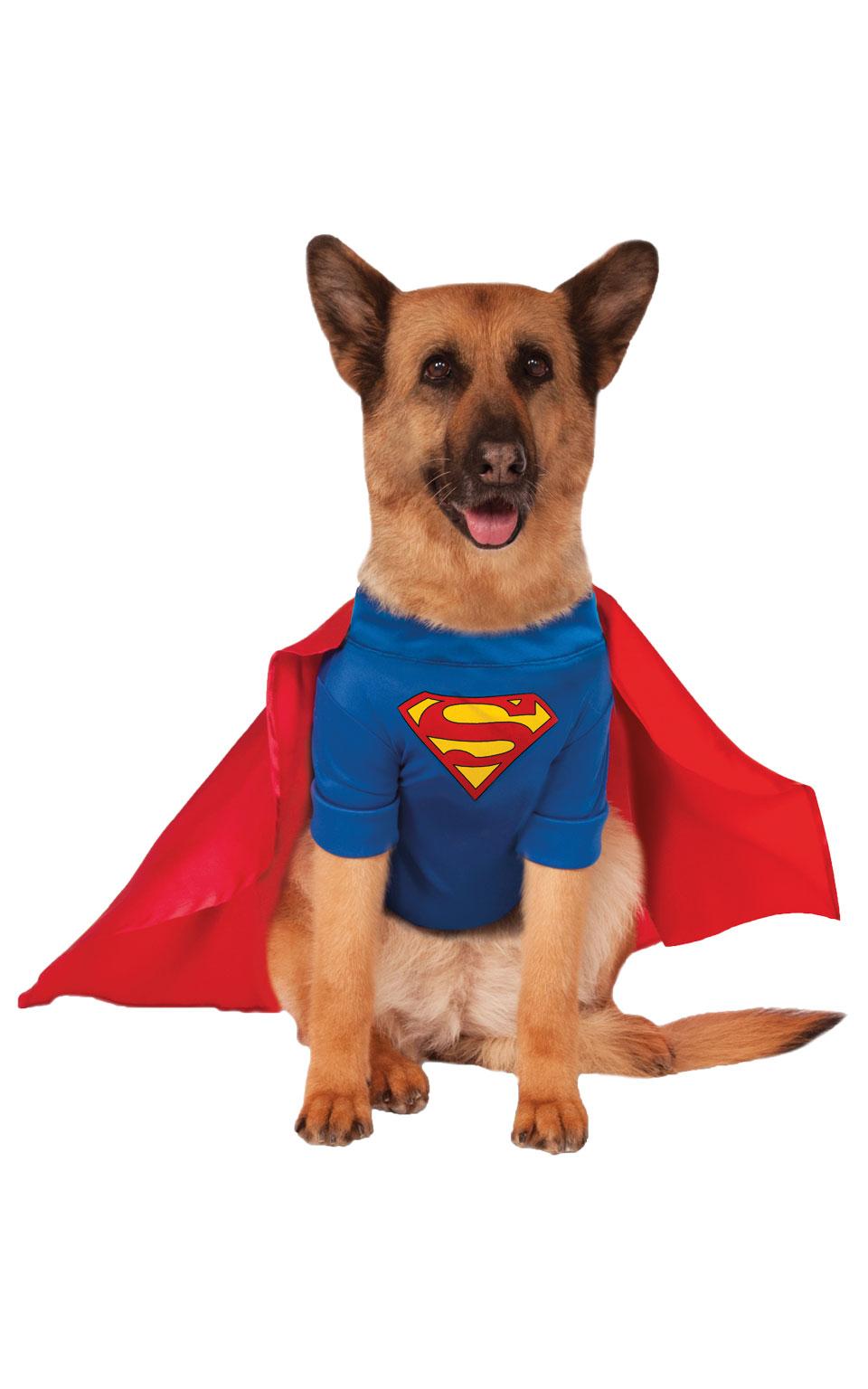 Rubies Kostým pre psov - Psí Superman Kostým pre psov: XXL