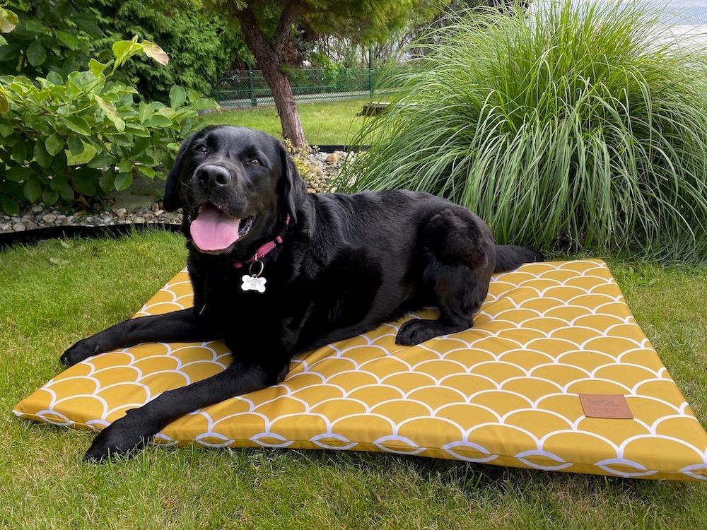 Matrace pro psa BedPet Honey Shell