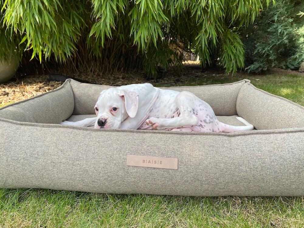 Ortopedický pelíšek pro psa BASE Nature