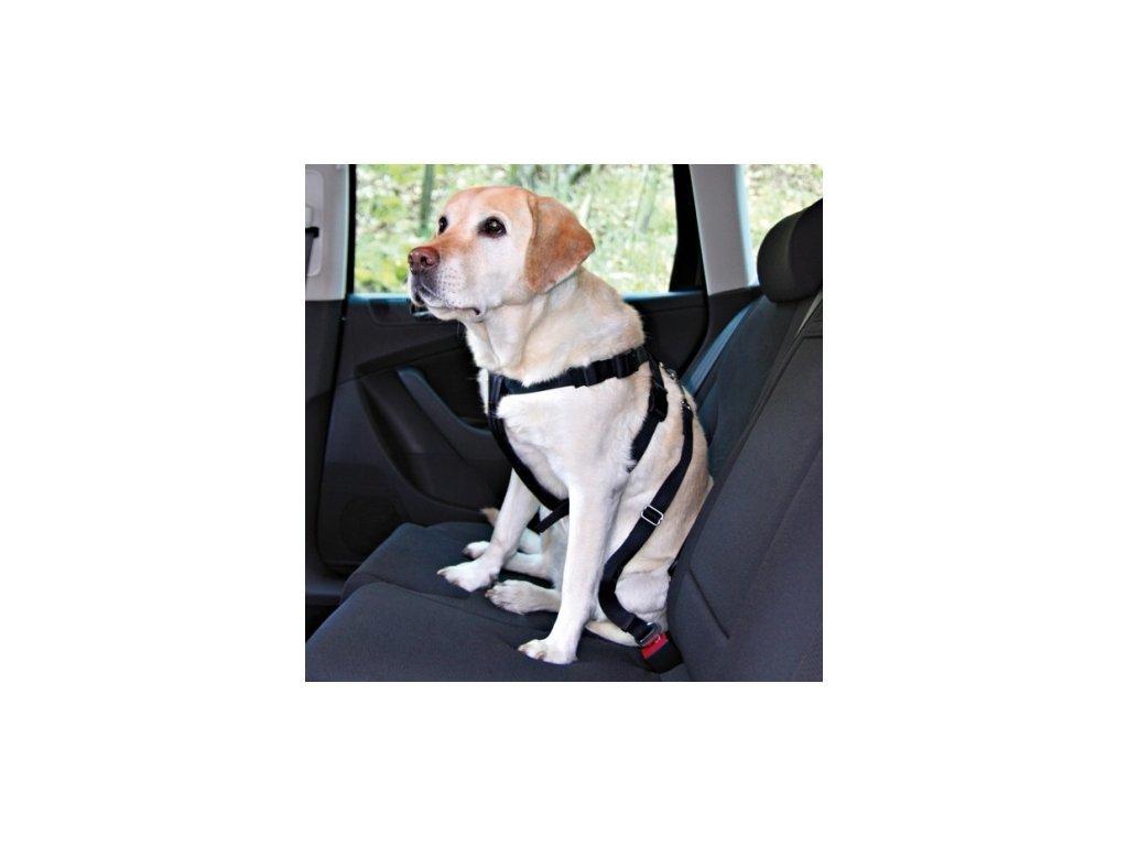 postroj do auta pro velke psy