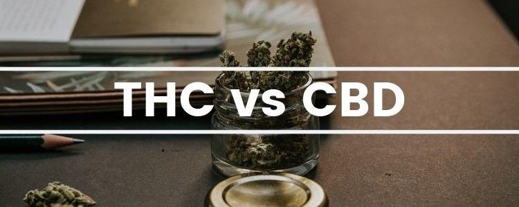 Srovnání CBD a THC: psychoaktivita, zdravotní benefity a způsoby užívání