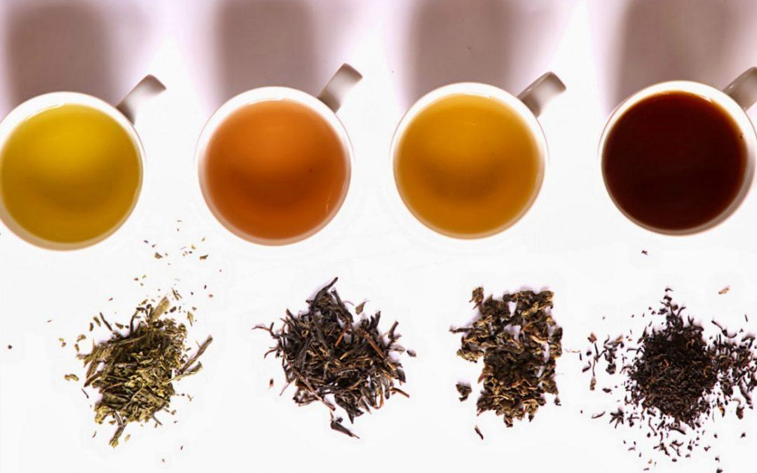 Čaj (nejen) léčí