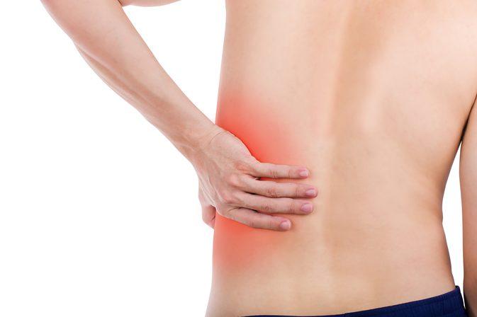 Ledviny a močové cesty