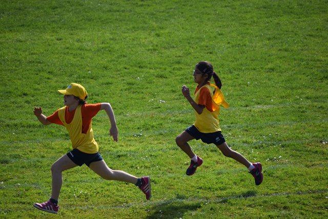 race-941732_1920
