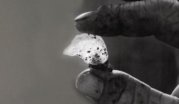 Utasítás a Masztika rágásához