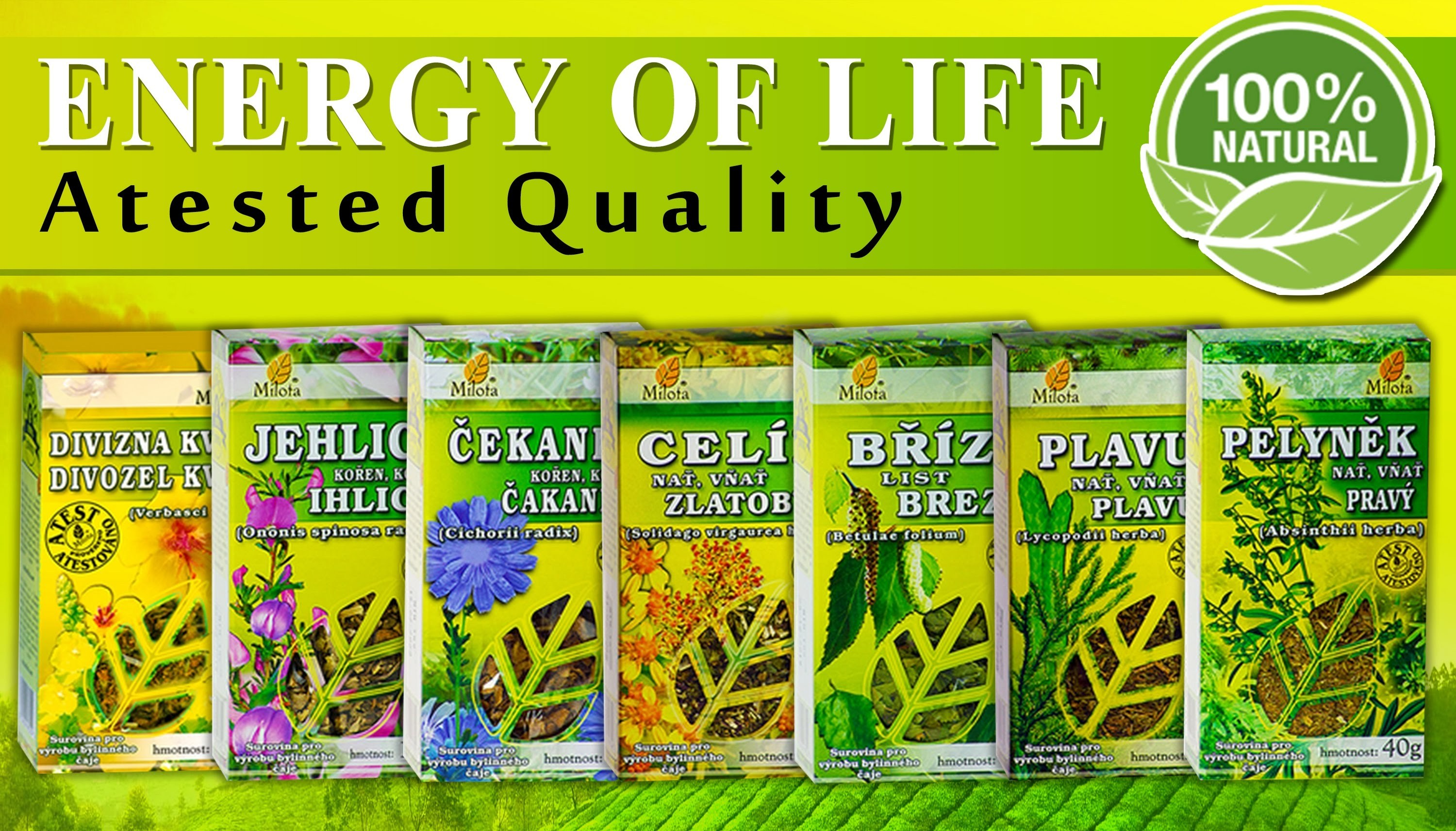 Over 150 kinds of herbal teas