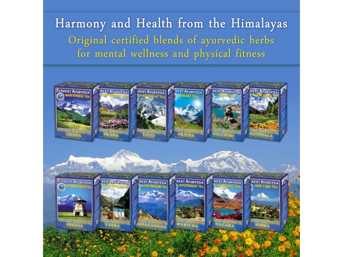Himalayas banner3